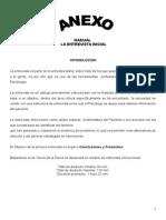 Anexo Formato Entrevista Clínica