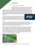 Article   Giardinaggio Facile (4)