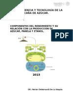 1-Componentes Del Rendimiento y Su Relación Con La Producción de Azúcar Panela y Etanol
