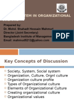 SOCIAL SYSTEM and Organizational Culture_v3