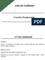 1 - CA Conceitos Fundamentais