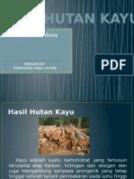 HASIL HUTAN KAYU