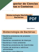 Biotecnologia de Bacterias e Fungos
