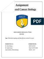 Molecular targeting and drug delivery system for cancer