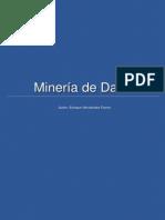 Ensayo Mineria de Datos