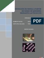 PROYECTO Bacteriocinas
