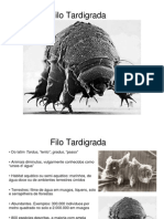 Tardigrada .pdf