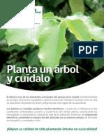 Manual de Plantación