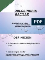 HEMOGLOBINURIA BACILAR... inf.pptx