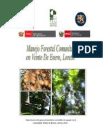Informe de Sistematización de La Experiencia de Aprovechamiento de Aguaje en La Comunidad Veinte de Enero, Loreto