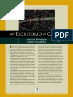 Insectos patagónicos