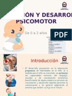 Estimulacion y Desarrollo Psicomotor