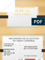 Metabolismo de La Glucosa en Los Tejidos