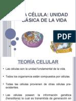 La-célula-completa