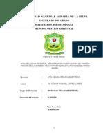 """Proyecto de Tesis """"Indicadores de calidad y contaminacion (Icas e Icos) en aguas residuales de la industria vinicola"""