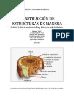 Composición y Estructura de la Madera (en ingenieria civil)