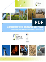 Biomasse énergie