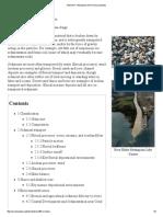 Sediment Phe