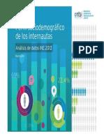 Perfil Sociodemografico de Los Internautas 2013 0