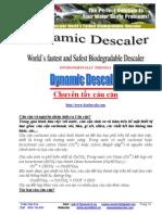 UTF-8__Gioi Thieu Dynamic Descaler.pdf