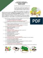 PRUEBAS SABER 5-6-7