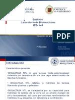 Disertación Enzimas.ppt