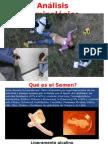 analisis de semen y delitos sexuales