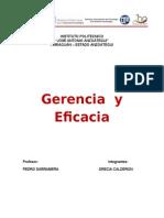 GERENCIA Y EFICACIA.doc