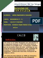 BIOQUIMICA (Fosforo y Calcio).pptx