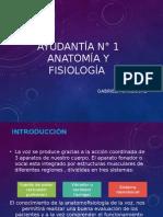 Ayundatía 1 Anatomía