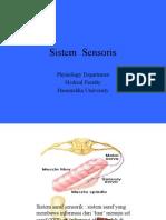 sensorik-motorik Neuropsikiatri