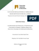 Los determinantes en la generación y la transferencia del conocimiento en pequeñas y medianas empresas del sector de las tecnologías de la información en Barcelona