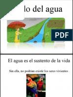 Ciclo Del Agua ppt