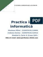Practică FEAA - Informatică