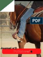Journal n°2