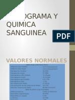 Hemograma y Quimica Sanguinea