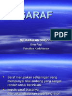SARAF.ppt