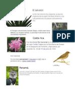 Aves y Flor Nacional de Los Paises Centro Americanos.