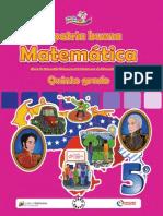 Matemática 5 (2013)