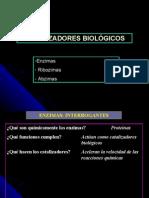 CatalizadoresBiologicos Ribozimas