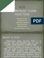Presentation PCR