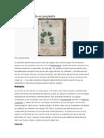 Teorías Acerca de Su Propósito Del Manuscrito Voynich