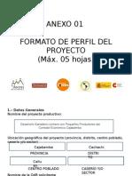 Formato de Perfil de Proyecto