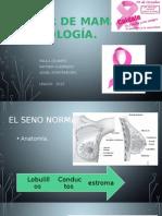Oncología - Ca de mama