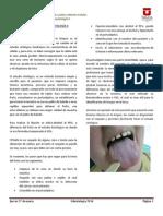 Introducción a La Histopatología II