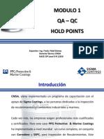 Modulo 1 Qa-qc Puntos de Inspección