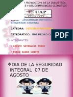 Seguridad Integralll (2)