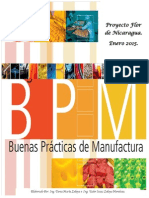 Manual BPM cap..pdf