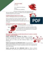 Cantidad de Glóbulos Rojos en La Sangre