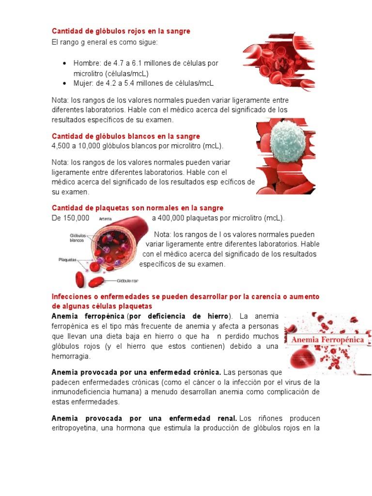 Cuales son los valores normales de globulos rojos en una mujer